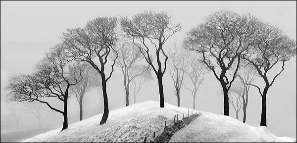 Windslow Landscape by Ann Miles