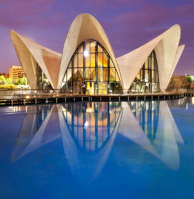 Oceanographic by David Clapp captured in Valencia, Spain