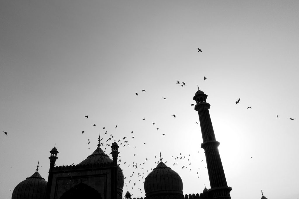 Dalip Singh, The Great Indian Mosque, Jama Masjid Delhi, India.