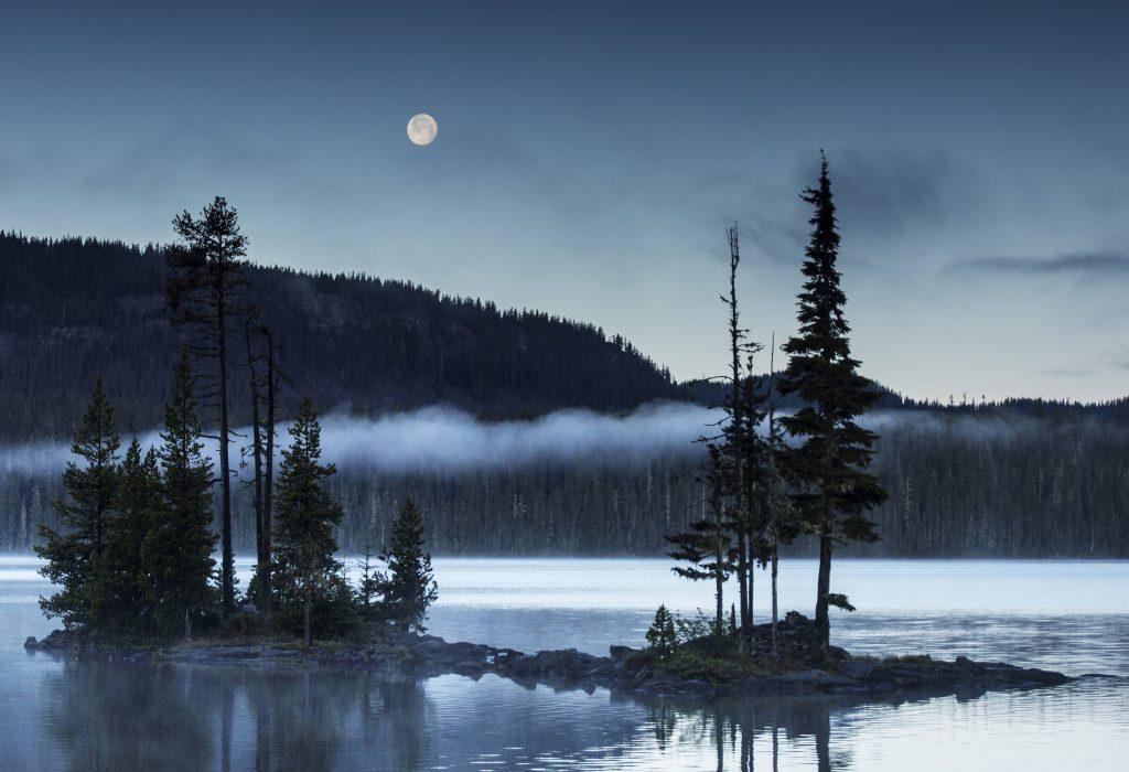 Gary Horsfall, Full Moon Over Waldo.