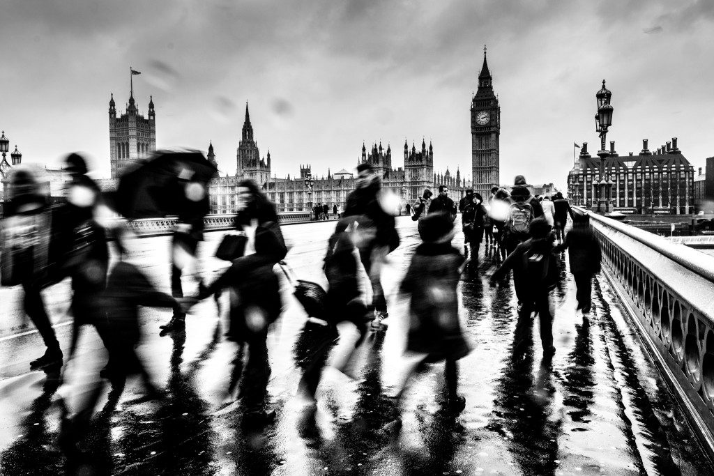 Westminster by Bergina Leka