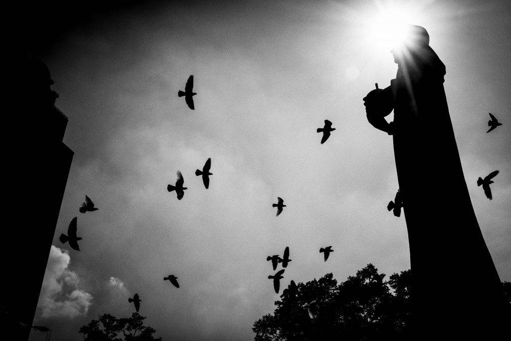 Statue - Saigon LQ by Sebastian Jacobitz