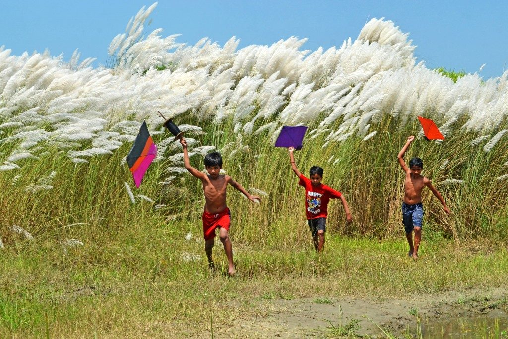 I0207___chinmoy-biswas___01-02-15___children-with-kites copy